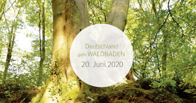 Deutschland Sommersonnenwende Waldbaden