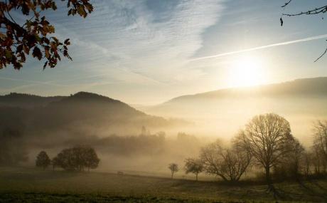 Nebel über Bergfreiheit