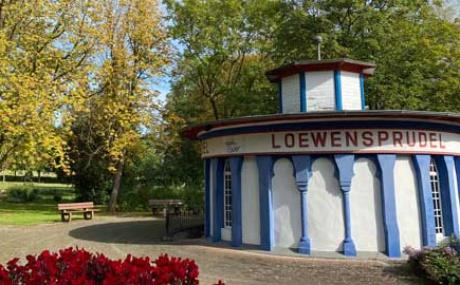 Loewensprudel Bad Zwesten Kl. Inhalt