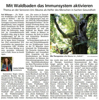 Presseartikel - Waldbaden Immunsystem