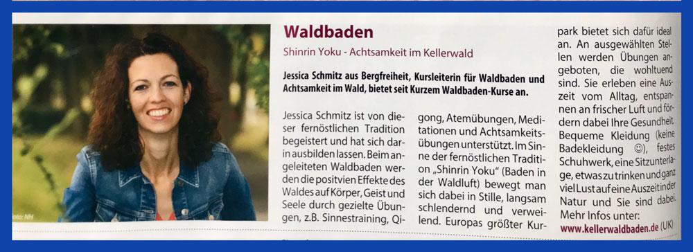 Bad Wildungen - erleben Artikel Waldbaden